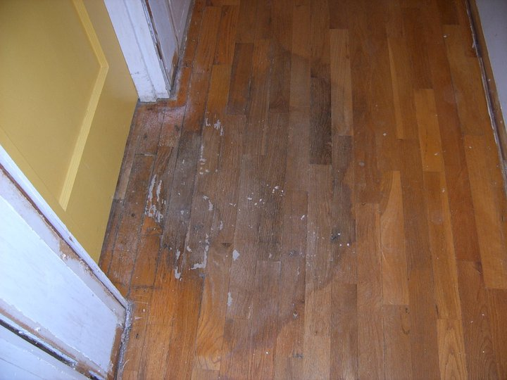 Oregon wood floor repair for Wood floor repair
